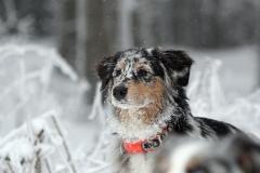 Jully_Urlaub_Winter_001